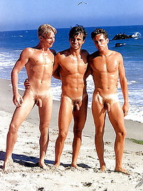 Sorry, naked young gay beach boys