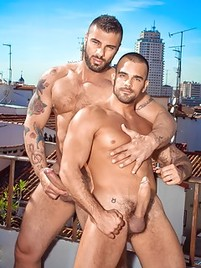 Gay muscle sex